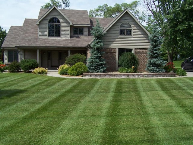 Home pro central farm and garden for Care for new sod